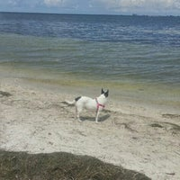 Photo Taken At Picnic Island Beach Dog Park By Jennifer K On 7 18
