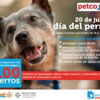 ... Foto tirada no(a) Petco por Petco México em 7 17 2014 ... 78e4d9a28edd2