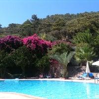 8/27/2012 tarihinde Gonca P.ziyaretçi tarafından Paradise Garden Butik Hotel'de çekilen fotoğraf