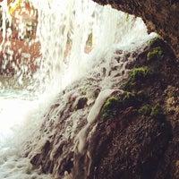 รูปภาพถ่ายที่ Predators Tunnel โดย Devin G. เมื่อ 10/13/2013