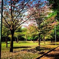 Photo prise au Parque Ibirapuera par Thulio C. le10/26/2013