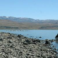 Foto tirada no(a) Parque Nacional Laguna Blanca por Visit Argentina em 9/10/2013