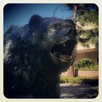 12/22/2012にIvy B.がUCLA Bruin Statueで撮った写真
