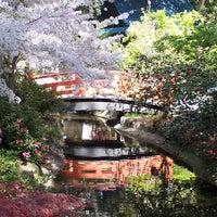 3/4/2014にDescanso GardensがDescanso Gardensで撮った写真