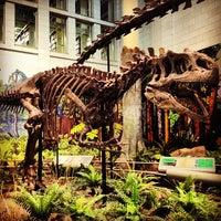 Foto diambil di Carnegie Museum of Natural History oleh Jenna A. pada 5/17/2013
