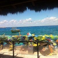 Foto tomada en Atlantis Submarine por Itzel A. el 10/5/2015