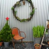 Killiecrankie Farm Nursery & Christmas