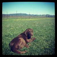 Foto tirada no(a) Larson Family Winery por Quinn W. em 2/9/2013