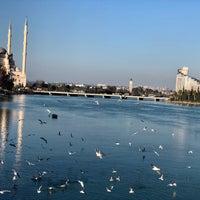 Foto scattata a Adana Köprübaşı da Eylül Ö. il 1/30/2018