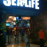 Foto diambil di SEA LIFE Grapevine Aquarium oleh Chris M. pada 4/20/2013