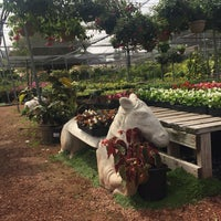 Photo Taken At Hashimoto Nursery By Jocelyn Z On 4 12 2018