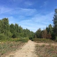 Middenvijver nature reserve