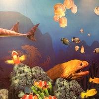 Foto diambil di SEA LIFE Grapevine Aquarium oleh Barbara K. pada 10/9/2013