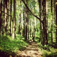 Снимок сделан в Forest Park - Wildwood Trail пользователем Jen J. 7/19/2013