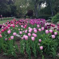3/28/2013にDonato C.がDescanso Gardensで撮った写真