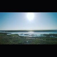 9/1/2015にKate P.がНабережная залива Паранихаで撮った写真