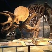 Photo prise au Science Museum of Minnesota par jimmy m. le8/23/2013