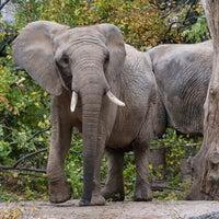 Снимок сделан в Zoo Basel пользователем Zoo Basel 1/22/2014