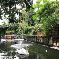 10/19/2018 tarihinde Анастасия Б.ziyaretçi tarafından The Gardens of Dinsor Palace'de çekilen fotoğraf
