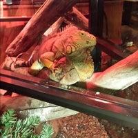 Foto diambil di Winking Lizard Tavern oleh Wendy N. pada 7/19/2013