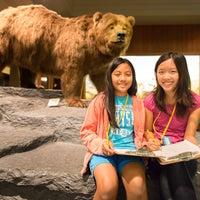 Foto diambil di Carnegie Museum of Natural History oleh Carnegie Museum of Natural History pada 5/6/2014