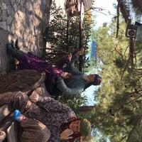 Снимок сделан в Yörük Parkı пользователем Nesrin K. 8/2/2019
