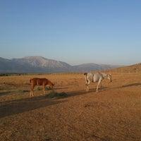 Снимок сделан в ünlüoğlu Çiftliği пользователем Özkan K. 8/1/2014