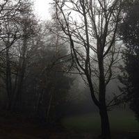 11/29/2013에 Shawn C.님이 Lakeview Park에서 찍은 사진