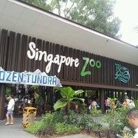 รูปภาพถ่ายที่ Singapore Zoo โดย Shamzzy Q. เมื่อ 7/14/2013