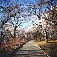 Снимок сделан в High Park пользователем aneel . 3/30/2013