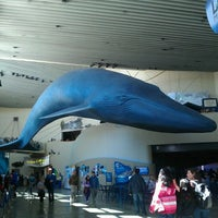 Foto tomada en Aquarium of the Pacific  por Nao M. el 4/1/2012