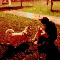 9/4/2015 tarihinde Ktty L.ziyaretçi tarafından Parque 9 - Virgen del Carmen'de çekilen fotoğraf