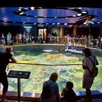 Foto tomada en Acuario de Nueva Inglaterra por New England Aquarium el 3/27/2014