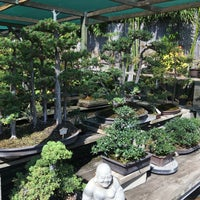 Photo Taken At Yamaguchi Bonsai Nursery By Melissa S On 8 28 2016