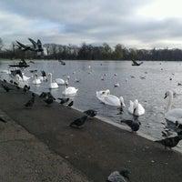 Das Foto wurde bei Kensington Gardens von shota r. am 11/29/2012 aufgenommen