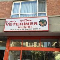 11/14/2015 tarihinde Burak A.ziyaretçi tarafından Duru Veteriner Kliniği'de çekilen fotoğraf