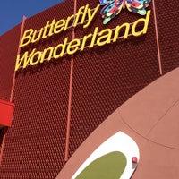 Photo taken at Butterfly Wonderland by Amanda B. on 9/21/2013
