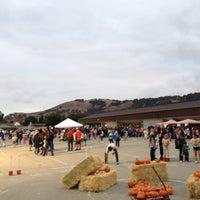 Sakamoto elementary school - Blossom Valley - San Jose, CA