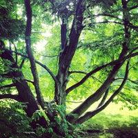 10/22/2012 tarihinde ibo •.ziyaretçi tarafından Britzer Garten'de çekilen fotoğraf