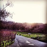 Foto diambil di Duckhorn Vineyards oleh Kouros M. pada 12/23/2012
