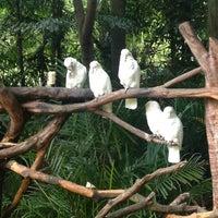 Das Foto wurde bei Xiang Jiang Safari Park, Guangzhou von Justmeaadje am 9/22/2013 aufgenommen