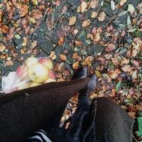 Das Foto wurde bei Hofladen Pesch von Corinna H. am 10/9/2014 aufgenommen