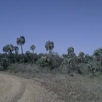 Foto tomada en Parque Nacional El Palmar por Laura R. el 8/16/2013