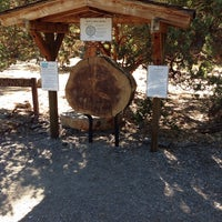 Idyllwild Nature Center - Other Great Outdoors in Idyllwild