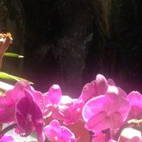 8/18/2013にMichelle Lee B.がBeverly Hot Springs Spa & Skin Care Clinicで撮った写真