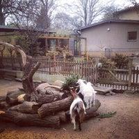 4/1/2014에 avtoportret님이 Tierpark Neukölln에서 찍은 사진