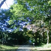Снимок сделан в Arnold Arboretum пользователем Andreas B. 10/11/2012