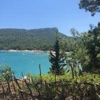 7/20/2019にŞeyma A.がYörük Parkıで撮った写真