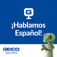 Geico Insurance Agent 1 Tip From 7 Visitors