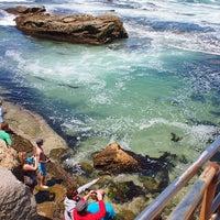 Снимок сделан в La Jolla Beach пользователем enomicar 5/19/2013